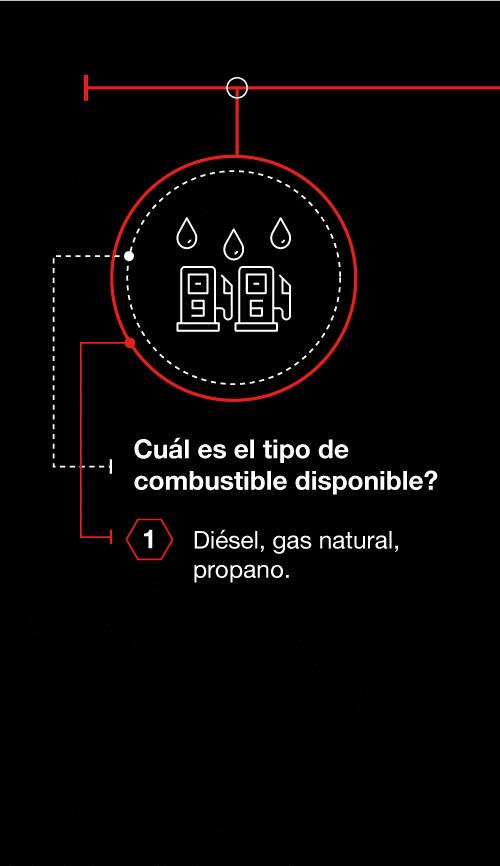 ¿Cuál es el tipo de combustible disponible?
